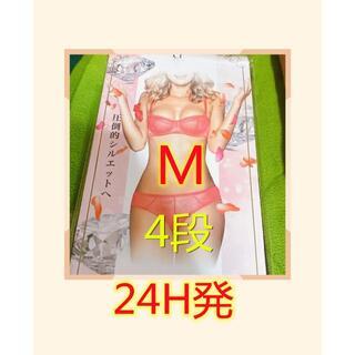 """""""大人気""""PRINCESS SLIMプリンセススリムMサイズ 新品1枚4段"""