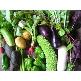 野菜詰め合わせ 農薬・化学肥料不使用