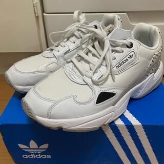 adidas - adidas♡シューズ