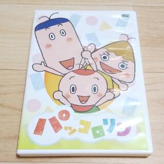 NHK パッコロリン DVD