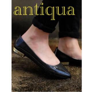 antiqua - 【新品未使用】アンティカ*フラットパンプス