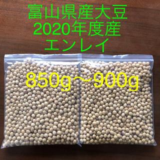 大豆 【富山県産エンレイ2020年度産】850g~900g弱【お値下げ不可】