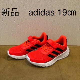 adidas - 【新品】adidas スニーカー  19㎝