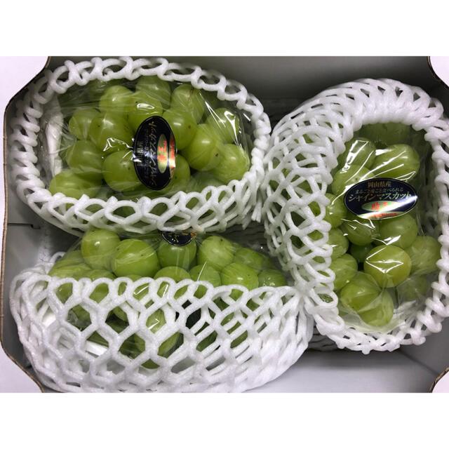 シャインマスカット(訳あり)3房約1.5kg 食品/飲料/酒の食品(フルーツ)の商品写真