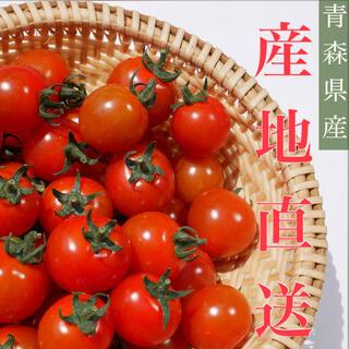 ミニトマト 1kg  [農学博士のDr.トマト] 採れたて☘️産地直送いたします