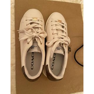 COACH - COACH スニーカー White‼︎