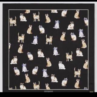UNIQLO - 新品😌🎩✨猫柄スカーフ