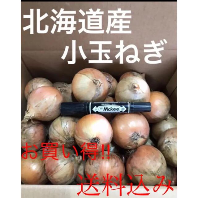 お買い得‼️北海道産 小玉ねぎ5kg 食品/飲料/酒の食品(野菜)の商品写真