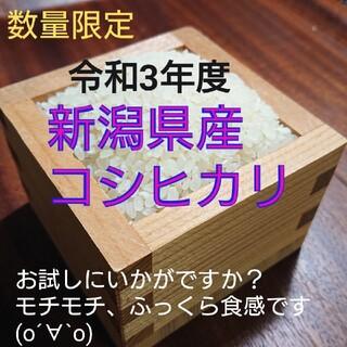 新潟県産 コシヒカリ 新米 10㎏