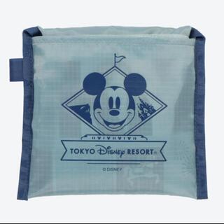 Disney - ディズニーリゾート エコバッグ 未使用