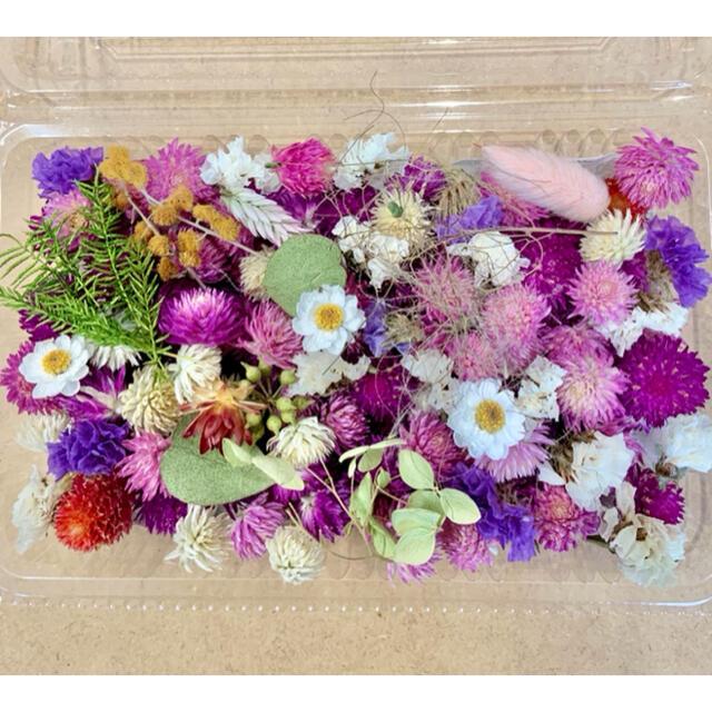 ドライフラワー花材詰合せ❁68千日紅100粒以上♪ハーバリウムやリースに♪小花 ハンドメイドの素材/材料(各種パーツ)の商品写真