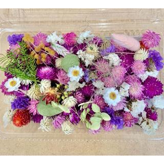 ドライフラワー花材詰合せ❁68千日紅100粒以上♪ハーバリウムやリースに♪小花