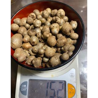 むかご 152g(野菜)