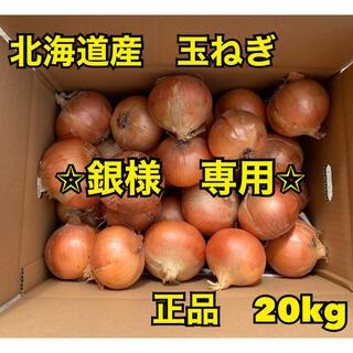 北海道産 玉ねぎ 正品 M〜L  混み玉 20kg(野菜)