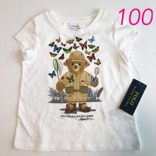ポロラルフローレン(POLO RALPH LAUREN)のラスト1点◆ ラルフローレン ガールズポロベアTシャツ バタフライ 3T/100(Tシャツ/カットソー)