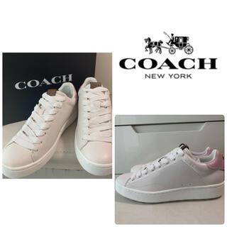 コーチ(COACH)の美品 コーチ ホワイトレザー ピンク スニーカー(スニーカー)