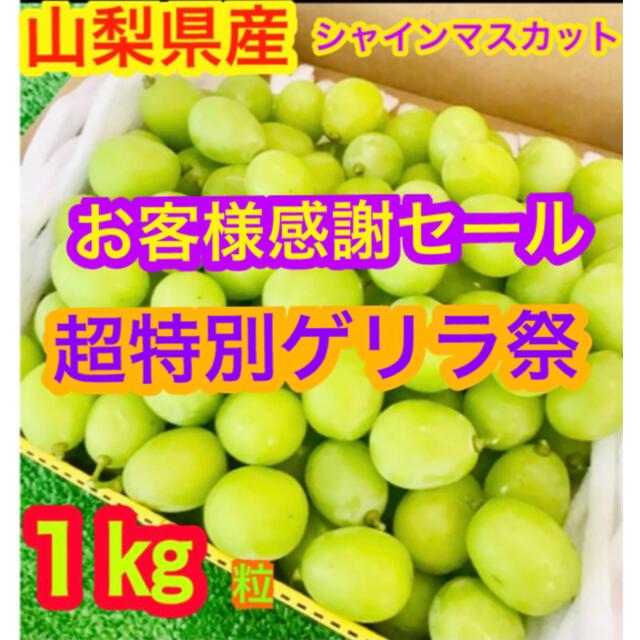 3数量限定!山梨県産 シャインマスカット 1キロ粒 食品/飲料/酒の食品(フルーツ)の商品写真
