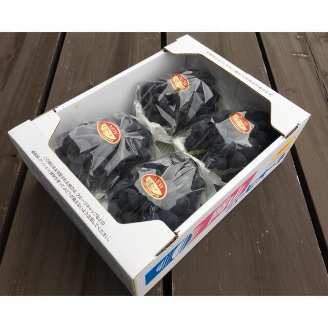 (訳あり)農家直送 岡山産ピオーネ 食品/飲料/酒の食品(フルーツ)の商品写真