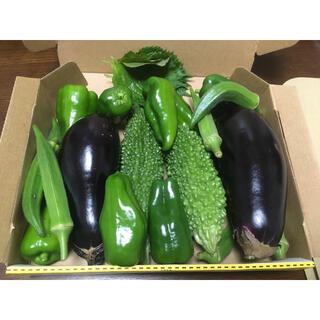 野菜詰め合わせ コンパクト(野菜)