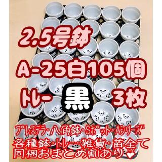 プラ鉢2.5号【A-25】105個+専用システムトレー黒3枚スリットプレステラ多(プランター)