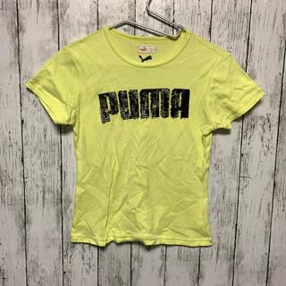 プーマ(PUMA)の<最終価格!9/29まで> PUMA size L(Tシャツ(半袖/袖なし))