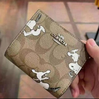 コーチ(COACH)のレア品 日本未発売 COACH C4592 コンパクト財布(財布)