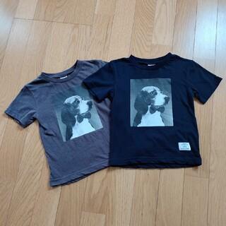 プティマイン(petit main)のpetit main Tシャツ 2枚セット 100cm(Tシャツ/カットソー)