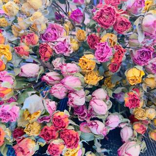 薔薇ドライフラワー ガーランド ハーバリウム花材 プリザーブドフラワー花材(ドライフラワー)