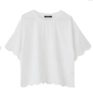 アクアガール(aquagirl)のアクアガレージ 半袖 スカラップカットソー 白 新品(カットソー(半袖/袖なし))