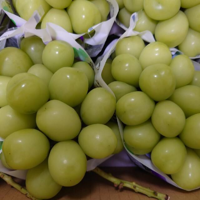 どかーん山梨厳選シャインマスカット5000g 食品/飲料/酒の食品(フルーツ)の商品写真
