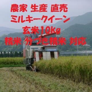 令和3産新米 ルキークイーン玄米10kg×1袋 精米対応(白米・分搗き米)