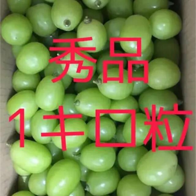 優秀品シャインマスカット 粒 産地直送 数量限定 食品/飲料/酒の食品(フルーツ)の商品写真
