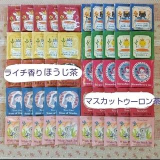 カレルチャペック紅茶店✤デイリー紅茶全9種50ティーバック+おまけプラ個包装1p