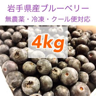 岩手県産ブルーベリー冷凍1kg【無農薬】(フルーツ)