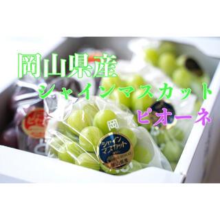 岡山県産 シャインマスカット ピオーネ お得なセット