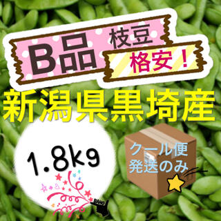 35 肴豆【B品1.8kg】新潟県黒埼産 枝豆 えだまめ(野菜)
