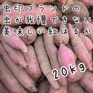 虫印ブランド 紅はるか B品 20kg  (野菜)