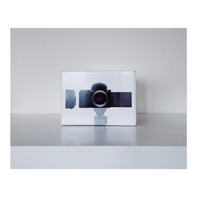 SONY(ソニー)のZV-E10L スマホ/家電/カメラのカメラ(ミラーレス一眼)の商品写真