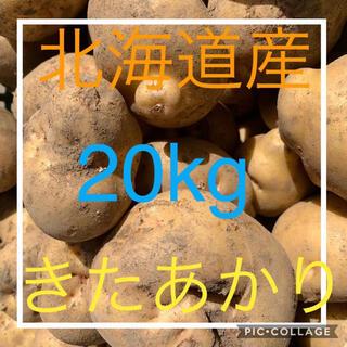 北海道産訳ありじゃがいも キタアカリ20kg(野菜)