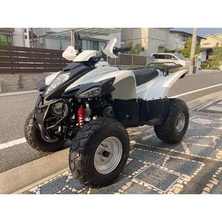 【極上品】ADLY アドリー バギー ATV50RS 程度良好 走行2750km