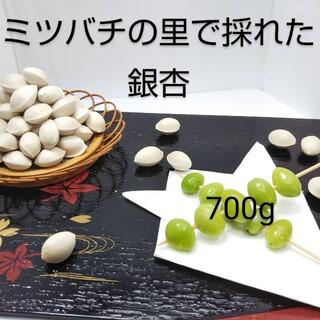 銀杏  700g(野菜)