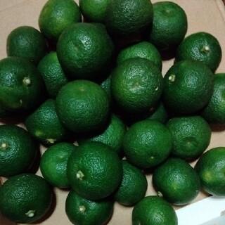 無農薬すだち1キロ(野菜)