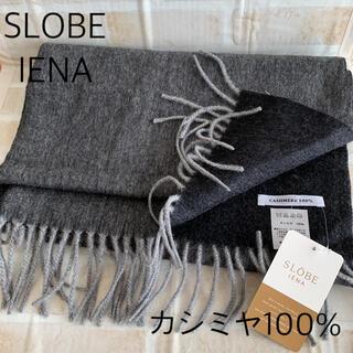 IENA SLOBE - 【新品未使用】SLOBE IENA スローブ イエナ カシミヤ100% マフラー