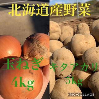 北海道産キタアカリ5kg玉ねぎ4kg(野菜)