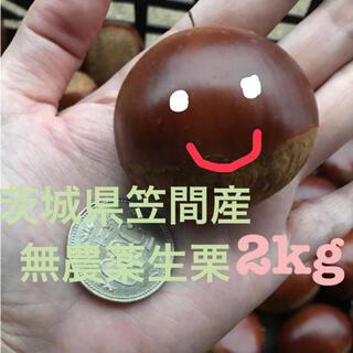 ななくさ様専用☆茨城県笠間産無農薬生栗2kg(フルーツ)