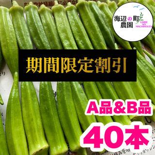 夏野菜【高知県産オクラ】A品&B品 40本 新鮮おくら産地直送!即購入OKです(野菜)