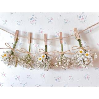 花かんざしとかすみ草のホワイトドライフラワーガーランド♡スワッグ♡ミニブーケ