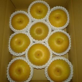 贈答用 福島県産梨 希少品種 大玉涼豊5kg箱