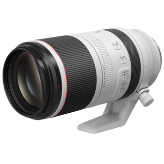 Canon - CANON RF100-500mm F4.5-7.1 L IS USM