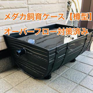 樽型メダカ飼育ケース【小】